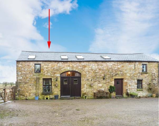 CURLEW COTTAGE, pet friendly in Newcastleton, Ref 903702