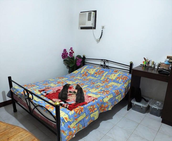 Doljo apartment