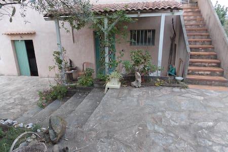 Detached house with garden in Vescovato, Corsica - Vescovato - Hus