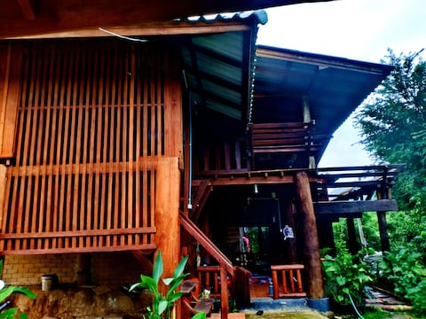 Elephants at home  stay