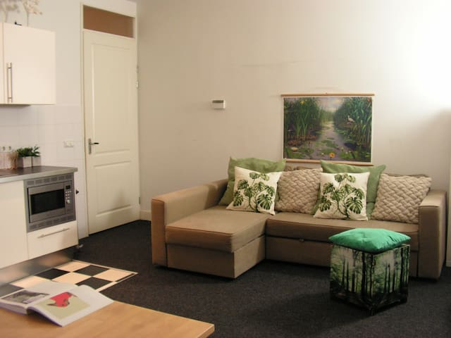 2 private rooms in the Centre! - Amsterdam - Daire