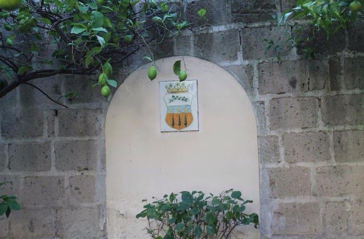 La Lanciolla