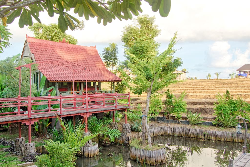 Bird House With Pond, Garden, Bridge and Ricefield at the background