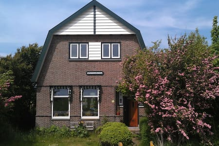 B&B Zuiderkreek - De Cocksdorp - Bed & Breakfast