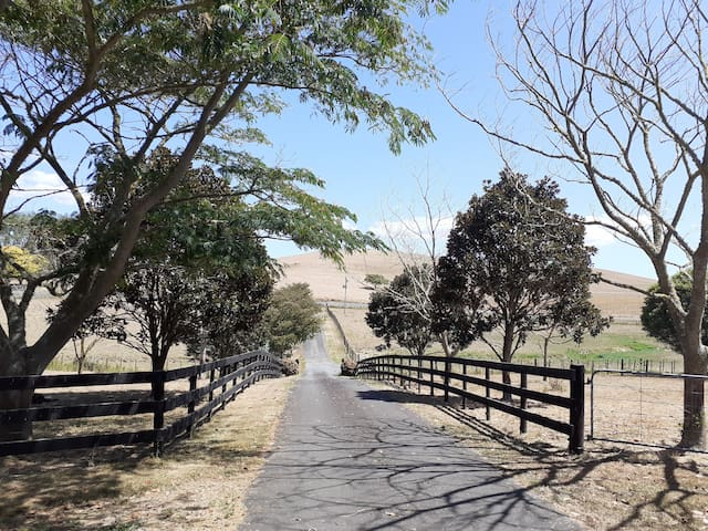 Lifestyle Haven in Ngahinapouri