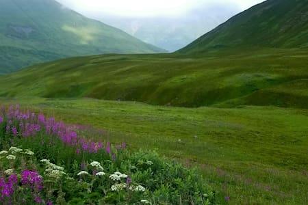 Alaska Wonderland Room 1