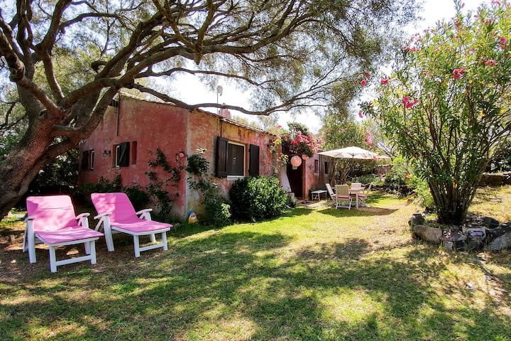 Nice Garden Villa near Costa Smeralda