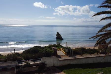 Villa by the sea with swimmingpool1 - Apartment