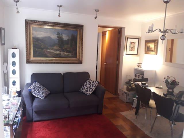 Living y Sofá cama (1,40 x 1,80 mt.)