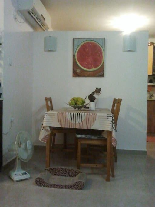 Bedroom In Quiet Neighborhood Apartments For Rent In Nesher Haifa District Israel