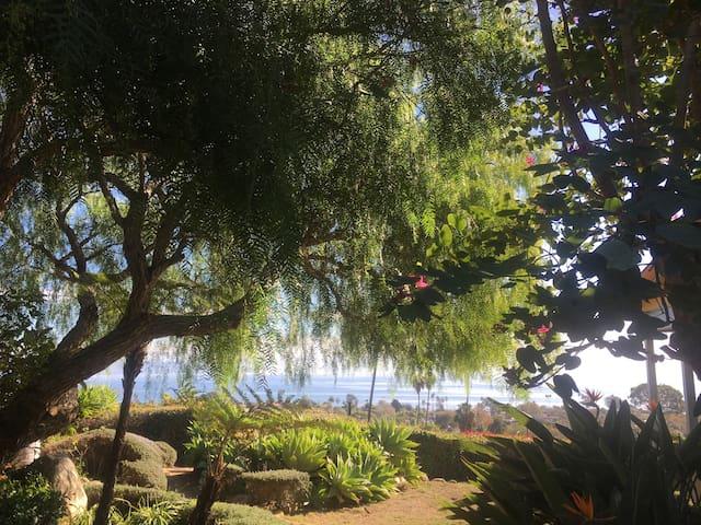 Cozy Palm, Walk to Beach, C.C. - Santa Barbara - Bed & Breakfast