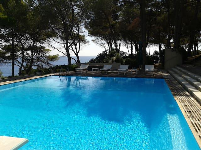 Camera Corallo/con piscina/Isola d'Elba - Capo D'arco