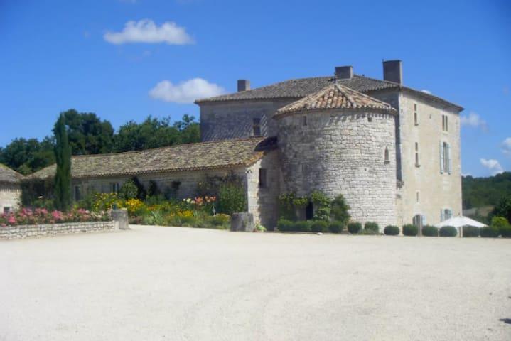 Vie de Château avec piscine en Quercy - Saint-Laurent-Lolmie - Istana