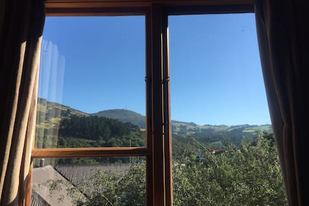 Private room in peaceful home - Dunedin - Bed & Breakfast