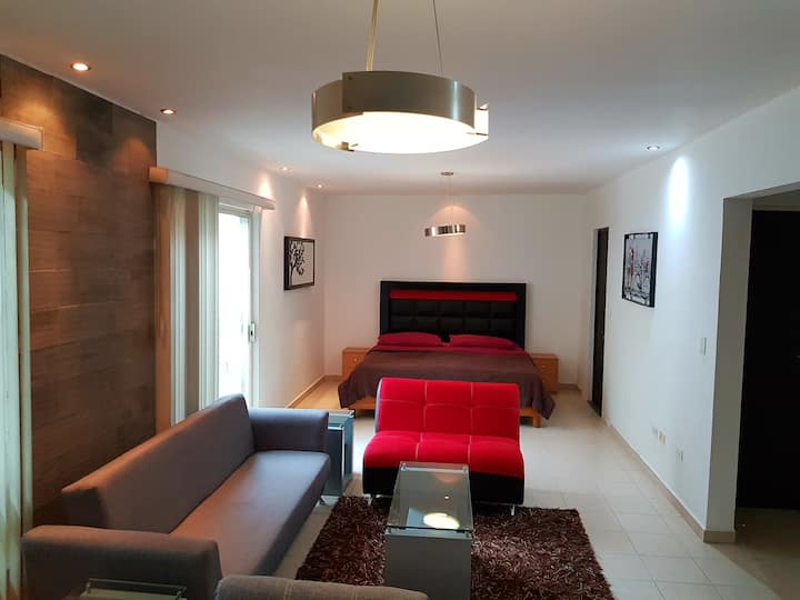 Apartment#10 Zona Tec-Nuevo Sur, Av. Alfonso Reyes