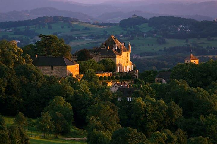 Chateau de Frontenay - Frontenay - Istana