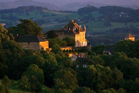 Chateau de Frontenay - Frontenay - Schloss