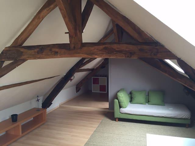 Appartement à la campagne aux portes du Mans - Pruillé-le-Chétif - Apartment