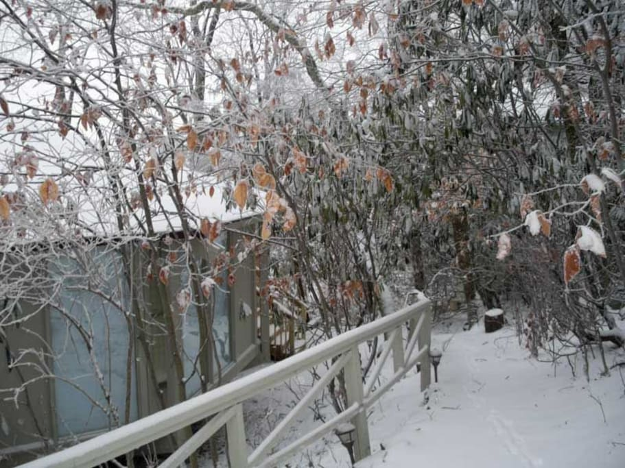 Snowy walkway to the Deck