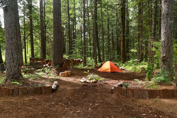 Cascade Valley Camp ***Site #1***