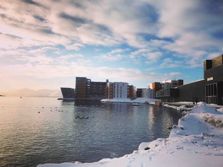 Tromsø water front Apartment, near Polaria museum