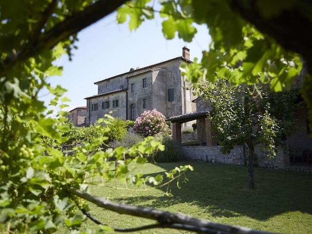 Tuscan villa with noble touch, perfect for groups - Sovicille - Dom
