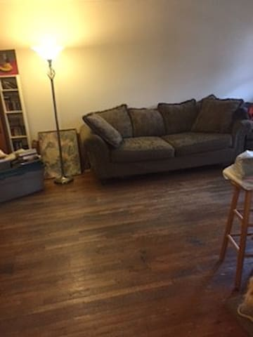 Comfy couch in nice (URL HIDDEN) be cat friendly - Staten Island - Apartment