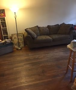 Comfy couch in nice apartment.Must be cat friendly - Staten Island