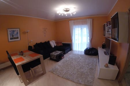 Cosy apartment with sauna! Walk to downtown 20min.