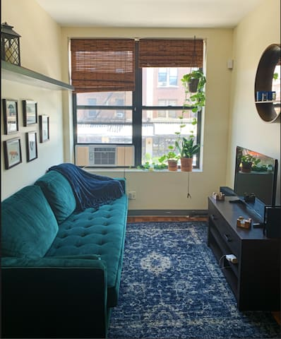 Fun+Cozy Astoria 1bedroom in the middle of it all!