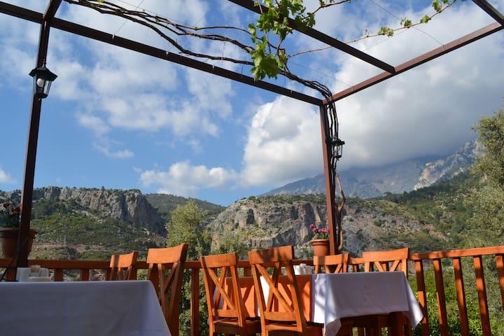 Faralya Misafir Evi/Twin Room - Uzunyurt Köyü - Wikt i opierunek