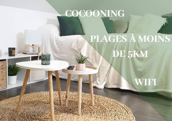 Le P'tit Cocoon, Meublé de tourisme*** chaleureux