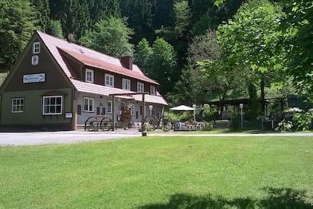 Harzer Waldwinkel - Bad Grund - 公寓