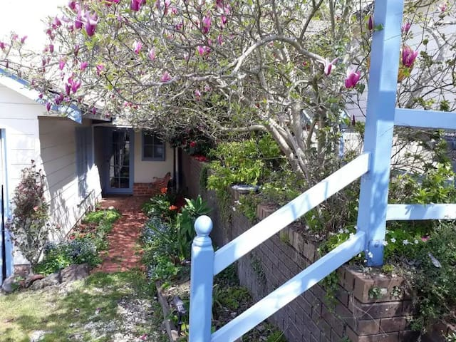Welcoming front entrance to cottage, walk through under the blooming Magnolia tree