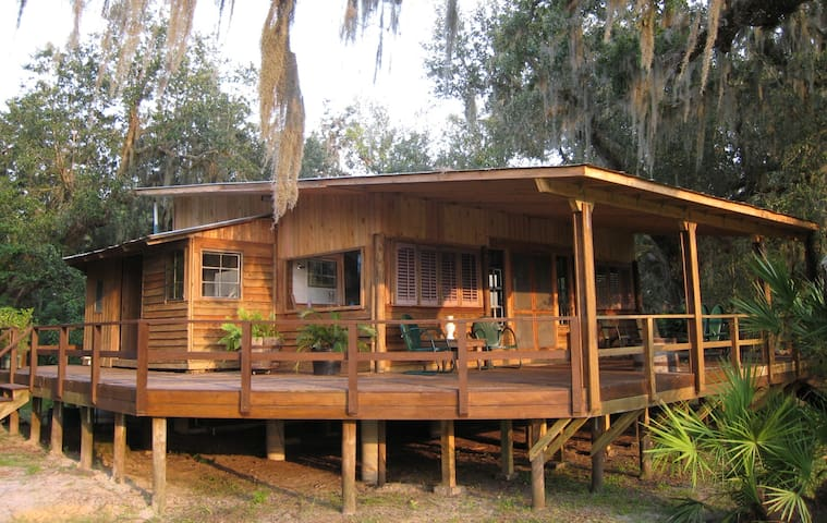 Off-Grid Artistic Cabin in the Woods of Florida