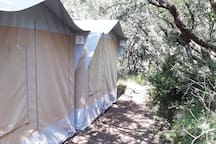 Double or Twin bed private bungalow Tent