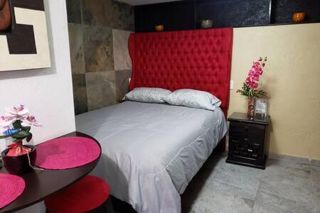 Comodo cuarto completo c/cocineta por UAEM e INSP
