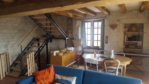 Marçay , petite maison typique de la Loire
