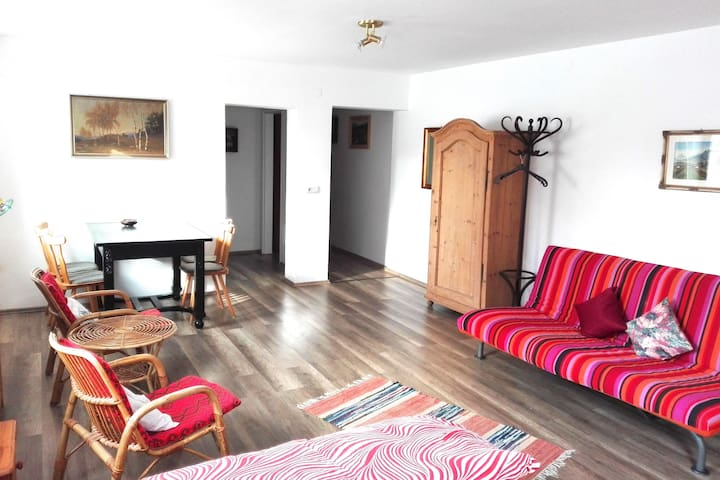 Apartment Fink (60 sqm) - Small Family Paradise!