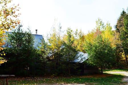 Adirondack Nature Preserve Hideaway - Essex