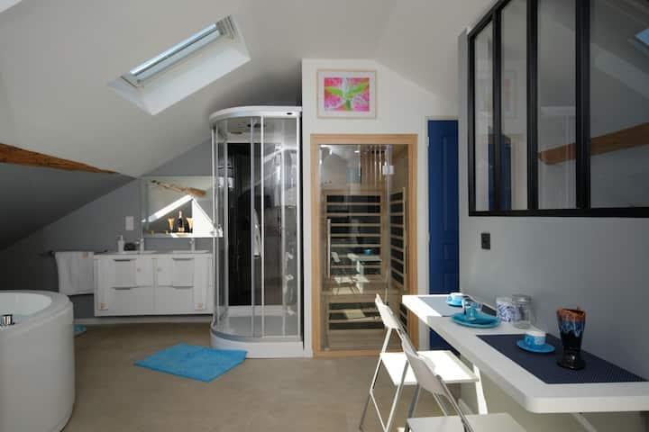 MV Suite & Spa Loft  / Spa-Hammam-Sauna  (privatifs)