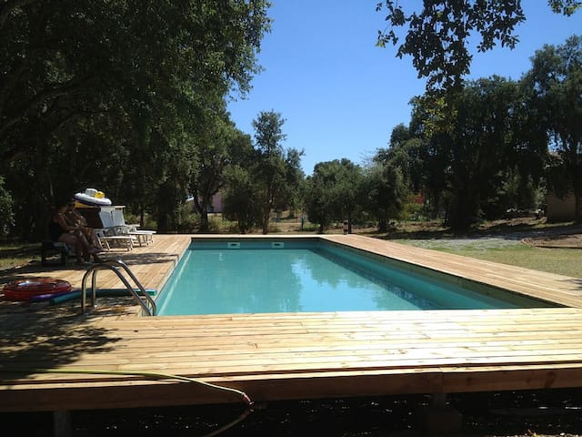 T3 meublé de 90 m² , calme, avec grande piscine, - San-Giuliano - Appartement