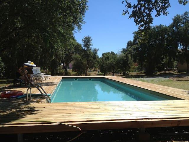 T3 meublé de 90 m² , calme, avec grande piscine, - San-Giuliano - Wohnung