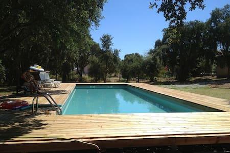 T3 meublé de 90 m² , calme, avec grande piscine, - San-Giuliano
