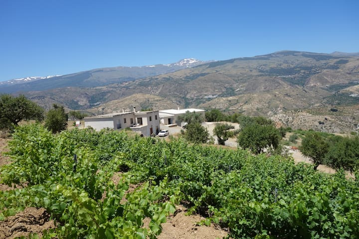 Bodega in the Alpujarras south from Sierra Nevada