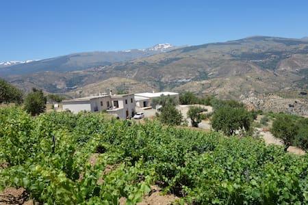 Bodega in the Alpujarras south from Sierra Nevada