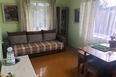 Cosy room 20 mins walk to Sigulda town center