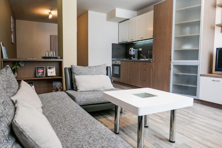 Lozenec Residential District Apartment