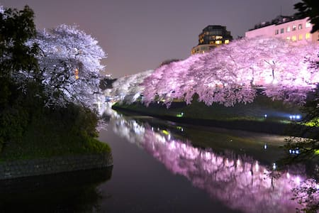 Max 10% OFF |MAX4|ASAKUSA|SKYTREE|UENO - Sumida-ku - Appartement