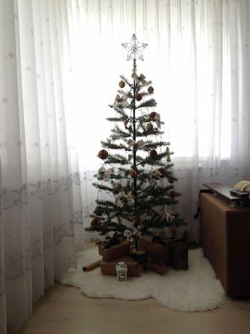 Комната для компании - Burshtyn - Apartment